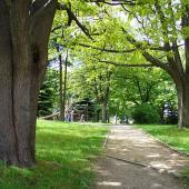 Park Janáčkova