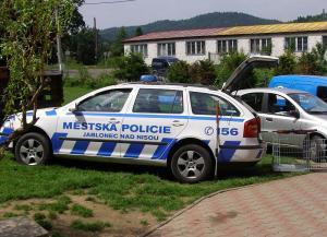 Vozidlo městské policie, autor: archiv MP