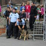 Pes čeká na povel..., autor: Petr Vitvar