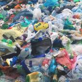 Plastový odpad, autor: archiv MMJN