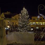 Rozsvícený vánoční strom, autor: Petr Zbranek