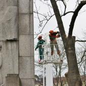 Odřezávání větví upamátníku, autor: Petr Vitvar